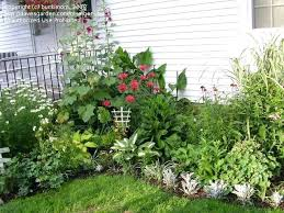 Backyard Flower Bed Ideas Backyard Flower Garden Build A Rock Garden Small Backyard Flower