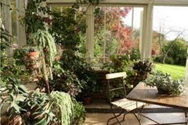 room with plants plants for living room impressive with image of plants for property