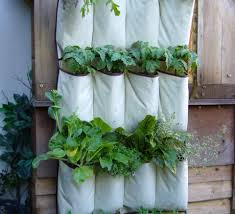 Hanging Herb Planters Vertical Vegetables