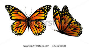 vector butterfly hearts on wings stock vector 124628098
