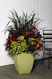 Design Flower Pots Plant Container Tips A General Design Rule Is To Mix Elements
