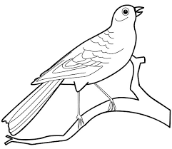 bird coloring lesson u2013 coloring lesson u2013 free printables and