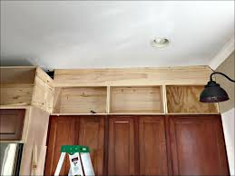 Home Decorators Collection Kitchen Cabinets Home Decorators Collection Ready To Assemble Kitchen Cabinets