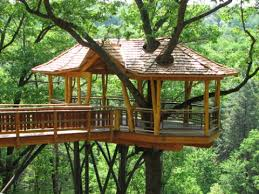 three house tree houses grow up intelligent travel