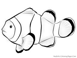 clown fish coloring sea anemone coloring pages printable nemo