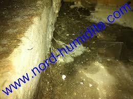 humidité dans une chambre humidité chambre solution best of merule dans cave humide humidite