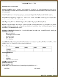 Sample Executive Summary Resume by 9 Executive Summary Sample Financial Statement Form
