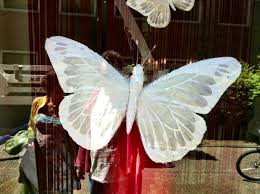 the white moth the conservative