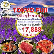 cuisine pro 27 โปรไฟไหม best journey 27 1 พค 2017 kaidee