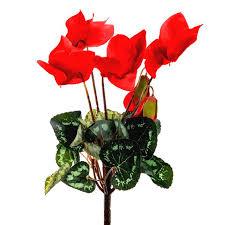 Silk Flower Plants - 26cm artificial cyclamen plant with red flowers shelf edge