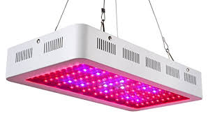 Full Spectrum Led Grow Lights Best Full Spectrum Led Grow Lights Reviews And Coupons