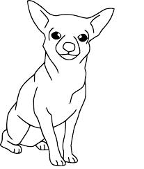 Coloriage chien Chihuahua à imprimer