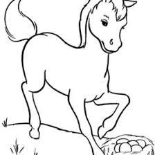 horse template u2013 animal templates free u0026 premium templates