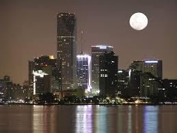 imagenes miami de noche noche de miami sur digital