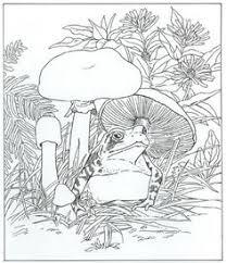 fortuna coloring book mushroom coloring 7