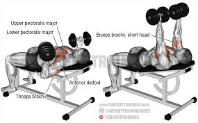 How To Do Dumbbell Bench Press Incline Reverse Grip Dumbbell Bench Press Exercise Instructions