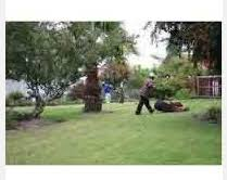 Landscape Maintenance Contract by Gardening Service Garden Annual Maintenance Contract Services