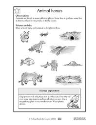 1st grade 2nd grade kindergarten science worksheets animal