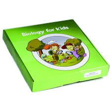 bfk1106biology for kids frog life cycle u2013 realbug