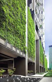 best 25 green facade ideas on pinterest wood slats singapore