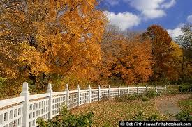 Mn Landscape Arboretum by Nelson Shrub Rose Garden Fall Mn Landscape Arboretum 4655