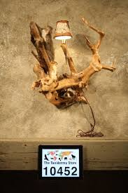 Cheap Coon Hunting Lights 23 Best Taxidermy Lamps Images On Pinterest Taxidermy Weird And