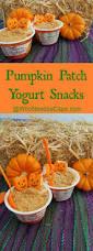 pumpkin patch yogurt snacks who needs a cape