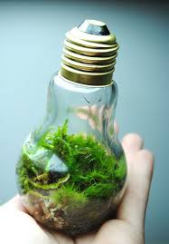 19 awesome diy ideas for recycling old light bulbs bored panda