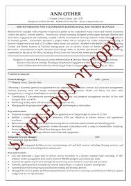 Sample Financial Resume by Management Consultant Resume Examples Resume Template 2017