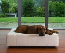 Modern Dog Furniture by 8 Modern Pet Furniture Designs To Drool Over U2013 212 Concept