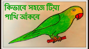 how to draw a parrot with marker pen and color pastel easily step