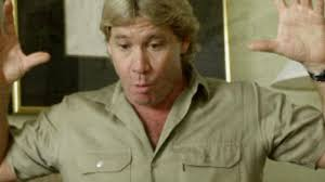 Resume Of A Teacher Sample by Steve Irwin Television Personality Biography Com