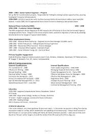 It Risk Management Resume Higher Education Resume Template Essay On The Bean Trees Custom