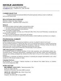 sample combination resume for stay at home mom gallery
