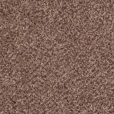 Shaw Carpet Area Rugs by Shaw Floors Carpet Ride It Out B Discount Flooring Liquidators