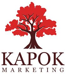 lexus lounge tampa kapok marketing to support children u0027s dream fund