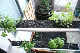window herb gardens indoor kitchen herb garden garden window herb garden indoor window
