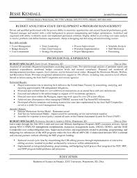 sample federal budget analyst resume resume ideas