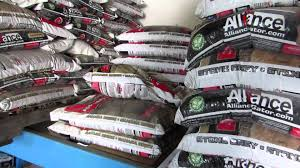 Quikrete Powerloc Jointing Sand by Polymeric Sand Lowes Youtube