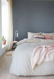 welche farbe passt ins schlafzimmer haus renovierung mit modernem innenarchitektur kleines welche