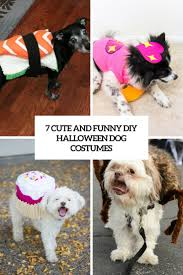 picture of 7 funny and cute diy halloween dog costumes cover