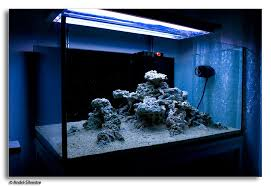 Aquascape Design Layout On The Rocks How To Build A Saltwater Aquarium Reefscape