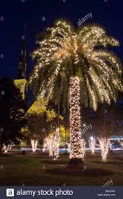 Bellevue Baptist Church Singing Christmas Tree by Palm Trees For Christmas Christmas Lights Decoration