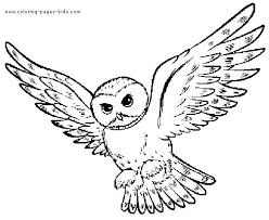 Patterned Flying Owl Drawing Illustration Great Gray Owl Clipart Flight Drawing Pencil And In Color Great