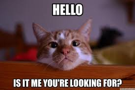 Can I Help You Meme - waveit helps you find the best viral content on the web