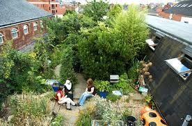 rooftop garden design risc roof garden