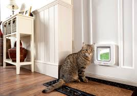 putting cat flap in glass door the sureflap microchip cat flap keep unwanted cats out
