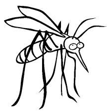 coloring pages luxury mosquito coloring lcddenrc4 pages