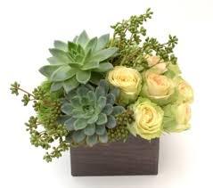 succulent arrangements complement design flower and succulent arrangement in