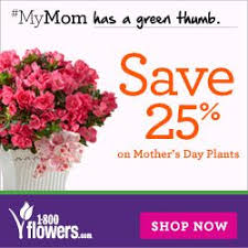 flower coupons 1800flowers coupon 25 on early delivery for s day